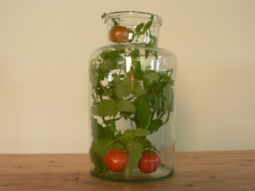 vases verre ancien